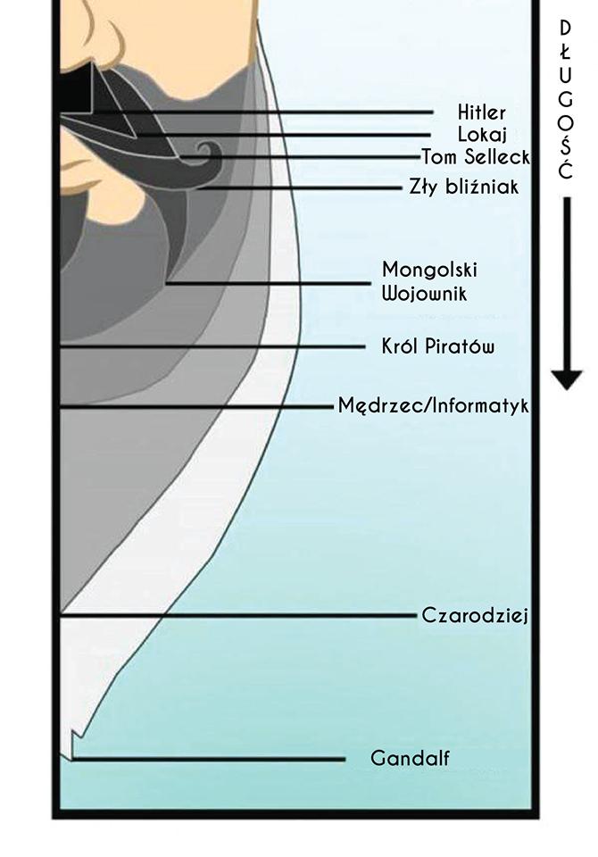 długość brody a kartacz